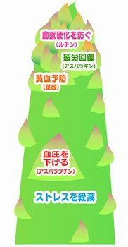 アスパラの栄養素.jpg
